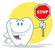Tooth character holding a stop sign Stock Image
