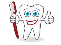 Tooth Character Vector Royalty Free Stock Photo
