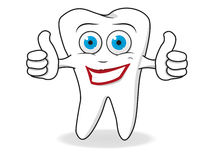 Tooth Character Vector Royalty Free Stock Images