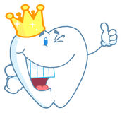 Tooth character wearing a crown Royalty Free Stock Photo