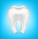 Tooth in clean shinny blue background isolated on white Stock Image
