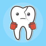 Tooth with a crack wear boxing gloves Stock Photos