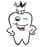 Tooth crown Royalty Free Stock Photo