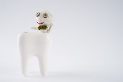 Tooth with cute dolls attacked by bacteria on isolate white. Background with copy space. Dental caries concept Royalty Free Stock Photography
