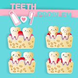 Tooth with dental care. On the green background Royalty Free Stock Photos