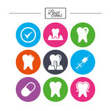 Tooth, dental care icons. Stomatology signs. Royalty Free Stock Image