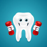 Tooth doing exercises with dumbbells Royalty Free Stock Photography