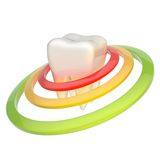 Tooth encircled with rings Stock Image