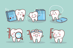Tooth with floss and clean Stock Image