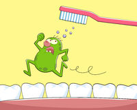 Tooth germ. Germ running away from tooth brush Royalty Free Stock Image
