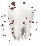 Tooth and germs Stock Photo