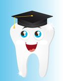 Tooth graduate Royalty Free Stock Photography