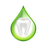 Tooth in green drop isolated on white Stock Image