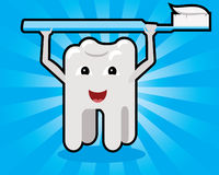 Tooth holding toothbrush cartoon concept Stock Images