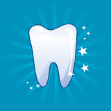 Tooth icon - vector illustration. Clean tooth icon - vector illustration Royalty Free Stock Photos