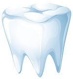 A tooth Stock Image
