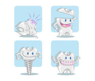The tooth implant, the crown, the orthodontics and the decay. Royalty Free Stock Photo