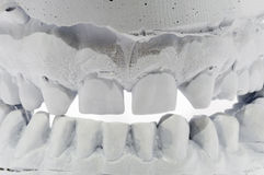 Tooth impression Stock Image