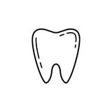 Tooth line icon. Dental and medicine, vector graphics, a linear pattern on a white background, eps 10 Royalty Free Illustration