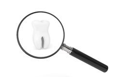 Tooth With Magnifying glass Royalty Free Stock Photos