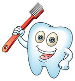 Tooth mascot Royalty Free Stock Images