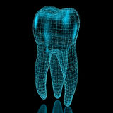 Tooth mesh Royalty Free Stock Images