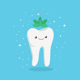 Tooth with mint Royalty Free Stock Image