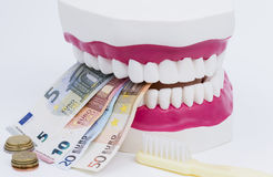 Tooth model with money. A tooth model with euro notes and brush isolated on white background Royalty Free Stock Photography