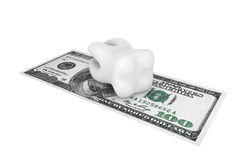 Tooth With Money Royalty Free Stock Photos