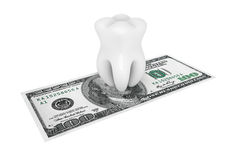 Tooth With Money Royalty Free Stock Image