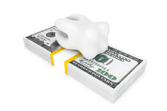 Tooth With Money Royalty Free Stock Images