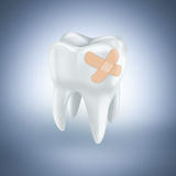 Tooth with plaster Royalty Free Stock Photos