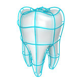 Tooth protection Stock Image