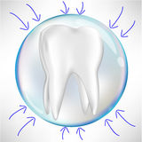 Tooth in protection sphere with arrows Stock Photos