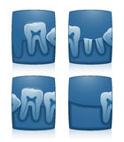 Tooth X-Ray. Vector illustration four dental x-ray Stock Image
