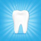 Tooth With Sunburst Stock Images
