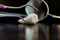 Tooth and tools for treatment Royalty Free Stock Photo