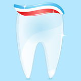 Tooth  and tooth-paste Stock Photos