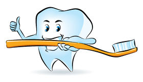 Tooth with Toothbrush Royalty Free Stock Photography
