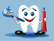 Tooth, toothbrush and toothpaste Royalty Free Stock Photo