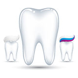 Tooth with toothpaste. Royalty Free Stock Image