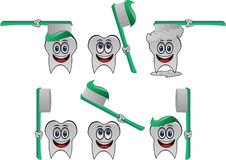 Tooth vector collection. Funny, vector Tooth character collection Stock Photography