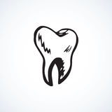 Tooth. Vector drawing Stock Images