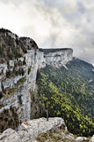 Tooth of wolf, france Stock Photo