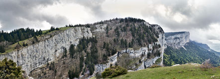 Tooth of wolf, france Royalty Free Stock Images