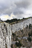 Tooth of wolf, france Royalty Free Stock Image