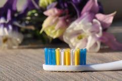 toothbrush fotos de archivo libres de regalías