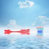 toothbrush Стоковое Фото