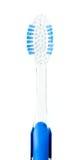 toothbrush Стоковое Изображение