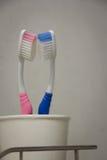 toothbrush Obraz Royalty Free